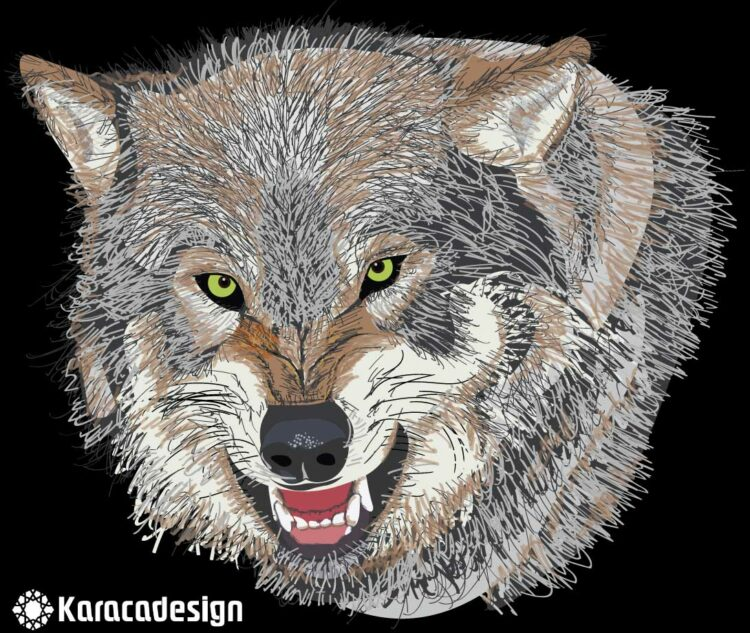 Wolf in vector graphics