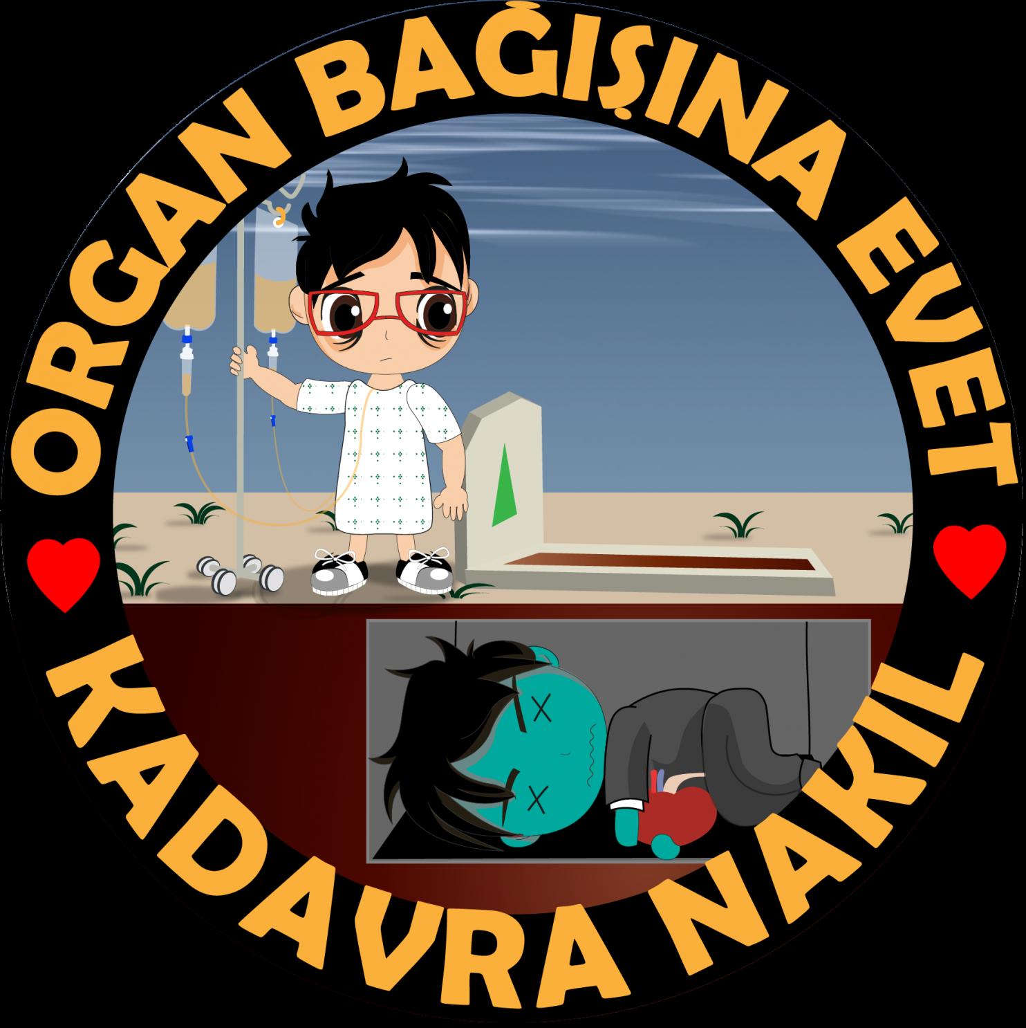 organ bagisi